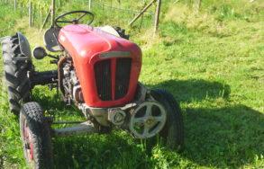 Traktor - Trattore